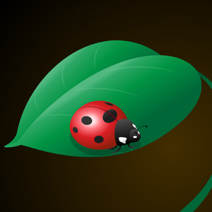 Ladybug - Semi-realistic vector illustration of a bright red ladybug sitting on top of a green plant leaf.  I don't care what anyone says, ladybugs are pretty cool. - semi,realistic,bright,red,ladybug,on,top,green,leaf,dark,background,nature,earth,insect