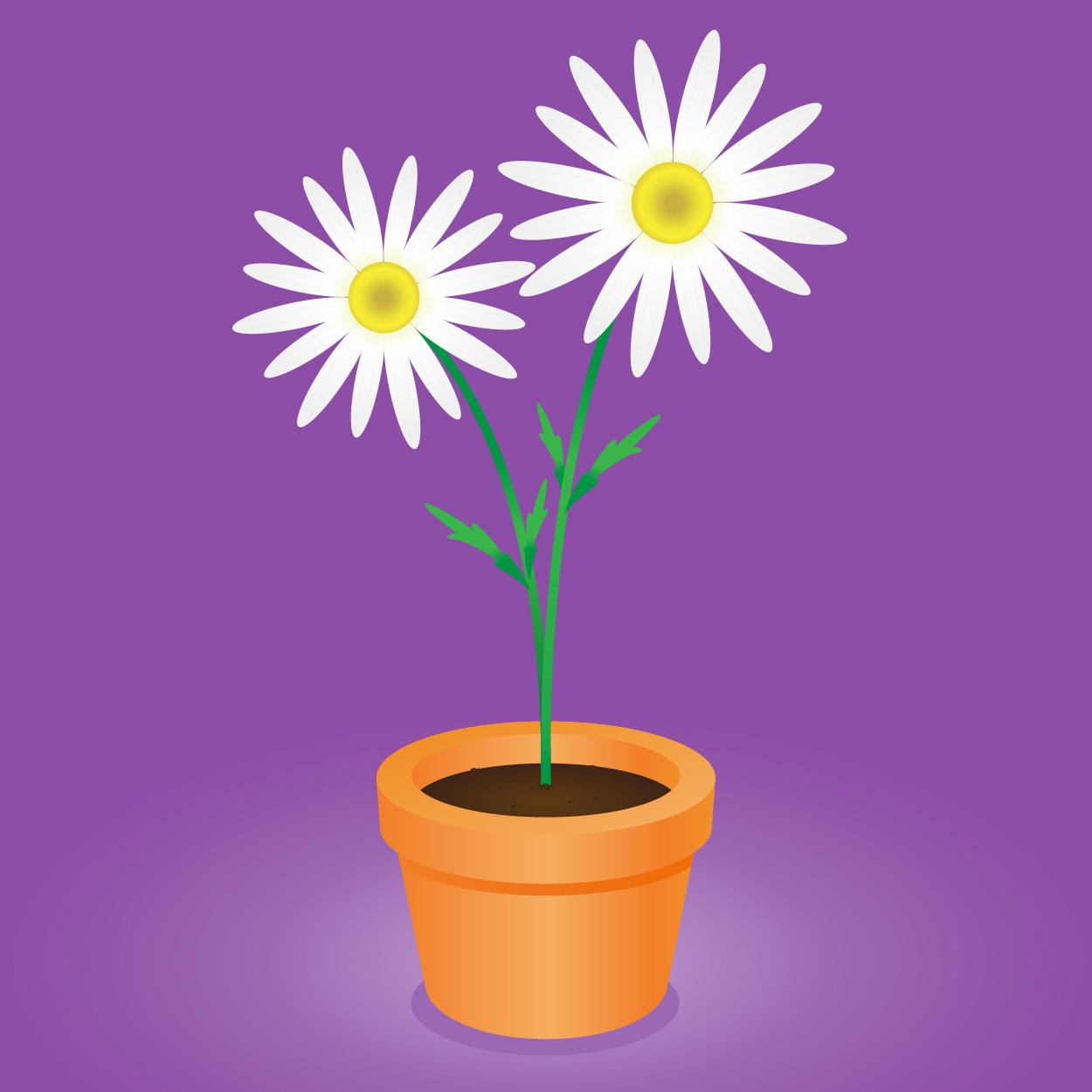 Daisy flower pot vector illustration of an orange clay flower pot daisy flower pot vector illustration of an orange clay flower pot with two lovely white izmirmasajfo
